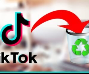 How to permanently delete your Tiktok account using the App